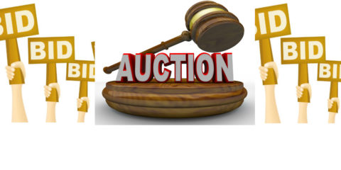 MHS Junior Auction